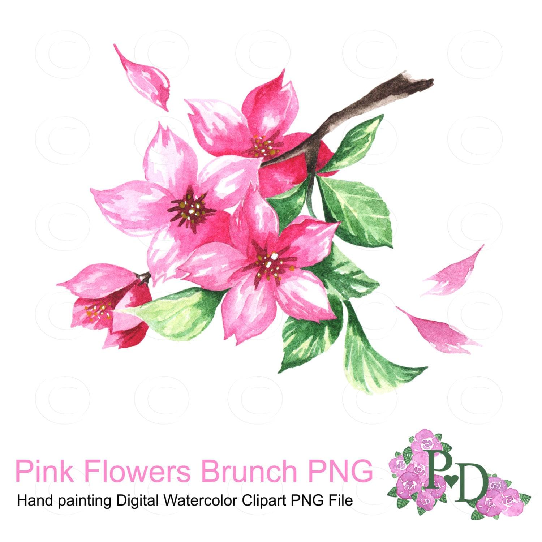 Pink Flowers Brunch Watercolor Clipart PNG File Digital Hand