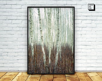 Birch Trees Print, Forest Photography, Woodland Print, Trees print, Forest Print, Nature Landscape, Forest Wall Art, Wall Art Print, Photo