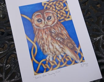 Celtic Tawny Owl Card - knotwork, wildlife art, bird illustration, realistic owl, signed print, knot, blue, blank greeting card, artist