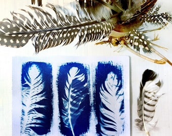Feather Art Print - Original Handmade Cyanotype 5x7 Inches - Blue and White Bird Feather Print on Watercolor Paper