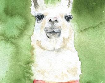 Llama Watercolor Painting Fine Art Print 5 x 7