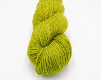 Merino Worsted Hand Dyed Yarn - Sprig