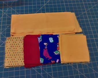 Baby Quilt Kit or Crib Quilt Kit