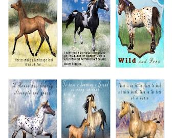 Beautiful Horses Tags