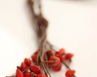 Eco Friendly Long Lariat Necklace - Wild Berries