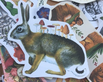 Mushroom Rabbit #9 surreal collage art handmade paper sticker japan