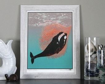 Right Whale Art Print Illustration home decor