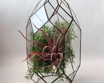 Geometrischer Dekor. Glasmalerei Terrarium Behälter. Hochzeit Tisch-Box. Orchidee geometrische Terrarium. Terrarium Behälter. Glasterrarium