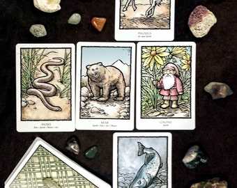Explorer - Looking for possibilities and direction? Great for students & adventurers. Intuitive psychic tarot oracle card divination reading