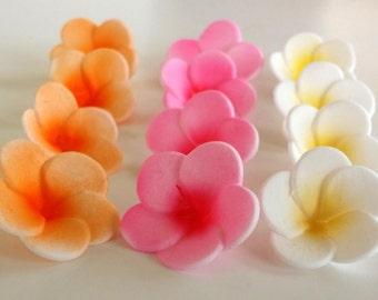12 Edible Plumeria Gumpaste Flower, for cakes, cupcakes and cake pops