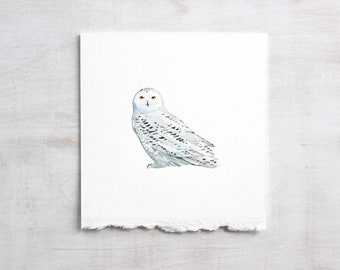 Snowy Owl Original Watercolor Painting, natural history illustration