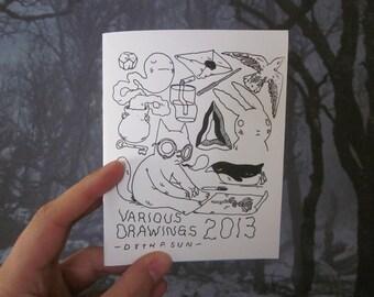 Various Drawings 2013 Zine