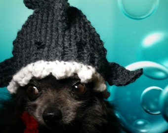 dog hat - Shark attack