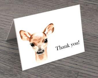 Set of Deer Thank You Cards & Envelopes