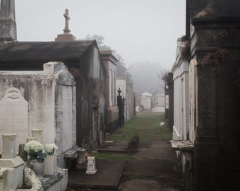 New Orleans Cemetery Fog Greeting Card