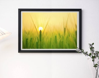 Wheat Art Print - Wheat Field - Wheat Art - Cereal - Whole Grain - Harvest - Wheat Crop - Farming - Bread Wheat - INSTANT DOWNLOAD PDF