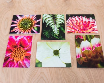 Fern & Flower Color Photo Note Cards, Set of 6 Blank A2 Cards Featuring Pinks, Greens and Whites