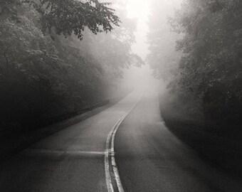 black and white photography, landscape photography, road photography, roads, foggy road, moody photography, appalachia, tree photography