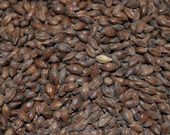 Roasted Barley 5 x 7 print