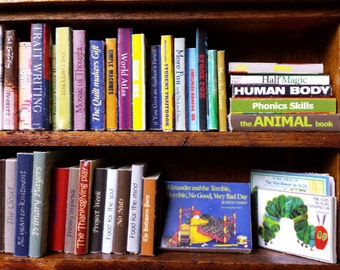 Dollhouse miniature primary school teacher's books set (35 assorted and different books)