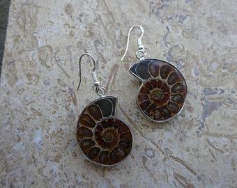Sterling silver Ammonite Earrings