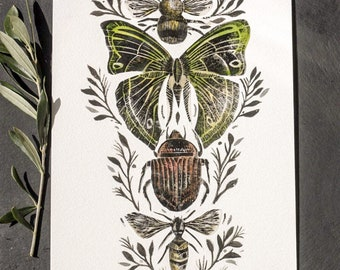 Insect collage 3