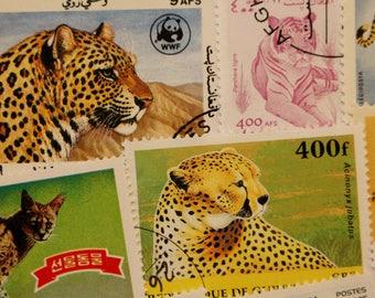 Big Cat Postage Stamps // World Modern and Vintage Mix Lot // Wild Cat // Cheetah // Lion // Tiger // Leopard // Panther // Lynx // Ephemera
