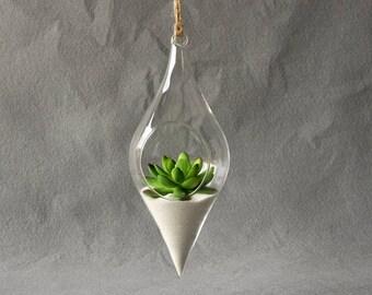 Glass Hanging Planter for Succulents, Hanging Terrarium, Succulent Planter, Air Plant Holder, Florarium, Succulent Pot, Tillandsia Air Plant