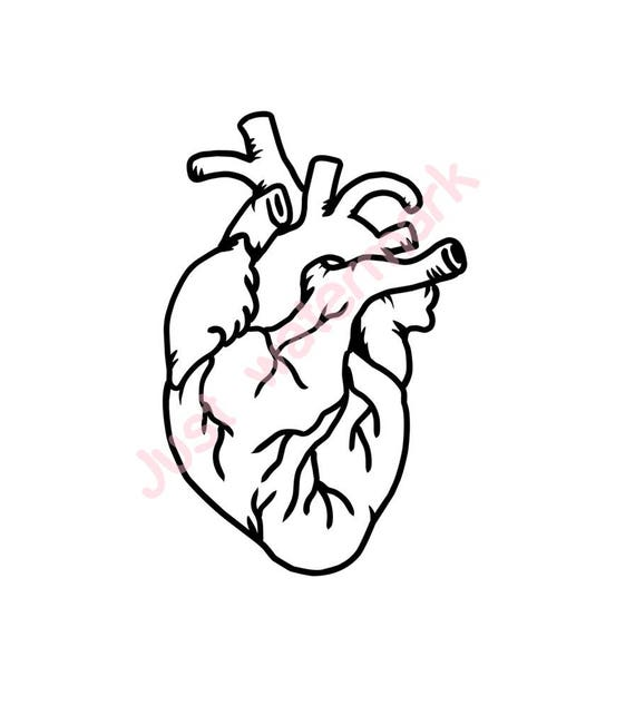 Human heart line drawing jpg svg real hand drawing for printing silhouette cameo cutting screening etc