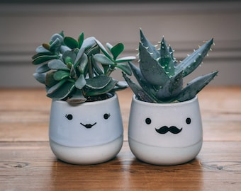 Cute Ceramic Indoor Plant Pot Gift -  Novelty Moustache, Comedy Eyelashes, Funny Planter For Succulent / Cactus