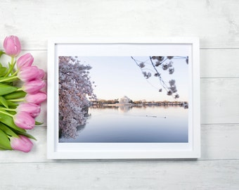 "Washington DC Cherry Blossom Photography, ""Cherry Blossom Jefferson Memorial"" Washington DC Print, Fine Art Photography, Affordable Wall Art"