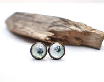 Dandelion Stud Earrings, Handmade Earrings, Nature Earrings, Glass Dome Earrings, Cabochon Earrings, Christmas Gift for Mom, Gift For Her