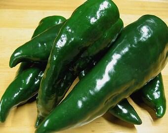 VPPH) ANCHO HOT Pepper~Seeds!!!~~~~~~~~~Big, Smokey Flavor