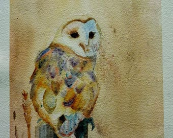 the OWL Lady in white or barn