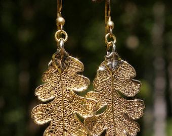 Gold Oak Genuine Leaf earrings