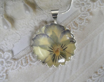 Yellow & Purple Pansy-Ombre Pastel Coconut Pansy Pressed Flower Crown Bezel-Pendant Under Glass-Symbol Loyalty-Nature's Art-Gifts Under 25