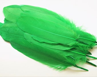 Set of 10 natural goose feathers tinted green, 15-20 cm