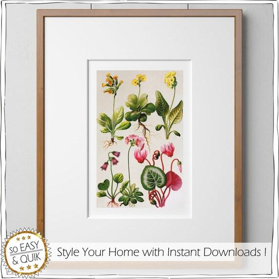 Garden Flower, Vintage, Printable