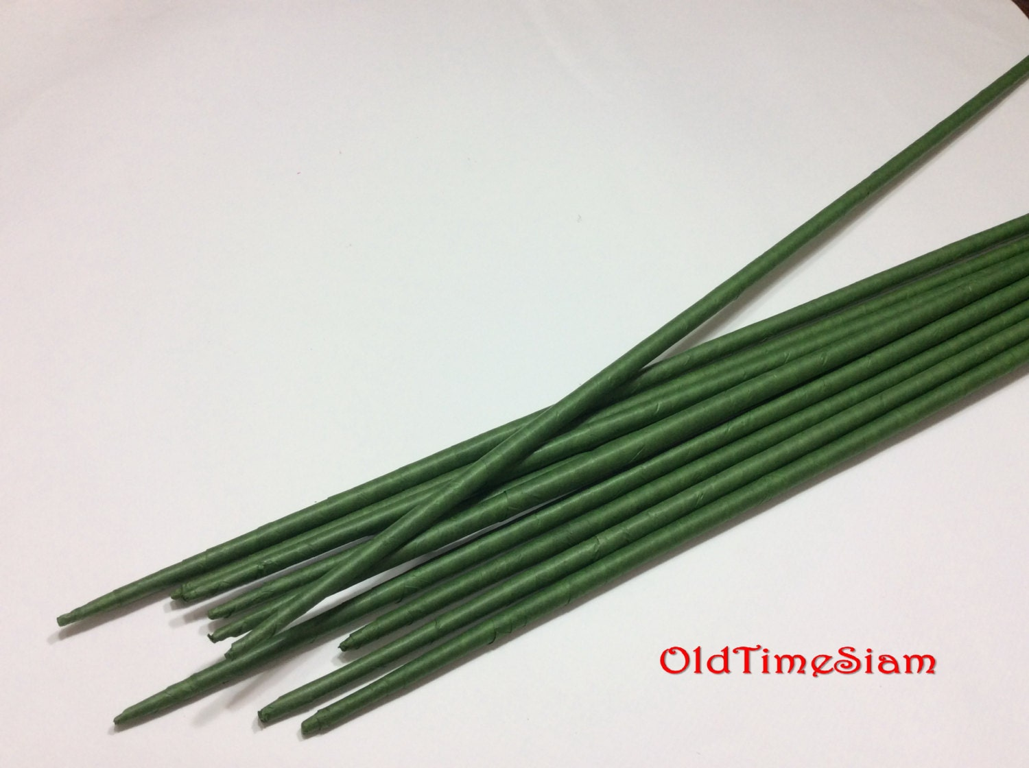 10 Stems Large Long Big Length 30\