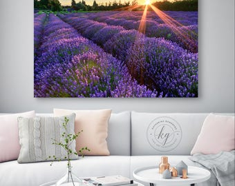 Metal Wall Art, Rustic Farm Wall Decor, Lavender Field Sunset Photo, Metal Print, Farm Photography, Sequim Washington Artwork, Purple Orange