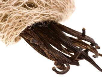 Vanilla Bean - Home Fragrance Oil - Warmer / Burner Oil - 2 Fluid Ounces