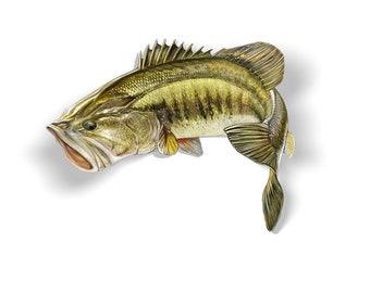 Largemouth Bass Decal, Largemouth Bass Sticker, Largemouth Bass, Bass