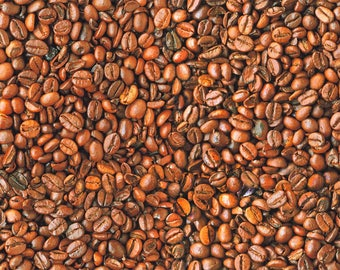 COFFEE BEANS Bean Cafe Cotton Fabric - Curtain Upholstery Craft material - 140cm wide - BROWN