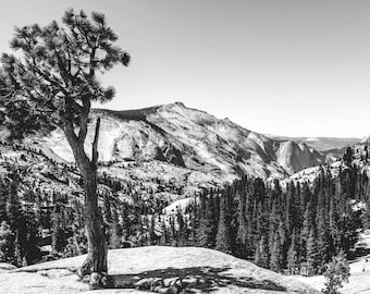 Olmsted Point, Yosemite National Park Photography, Black and White Photography, Nature Landscape