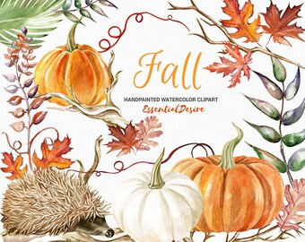Thanksgiving Clipart Watercolor Pumpkin Watercolor Hedgehog clipart, Autumn clipart, Fall DIY Clip Art, Autumn leaves, PNG files, Halloween