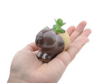 Tiny capybara planter - animal planter, ceramic planter - made in Brazil
