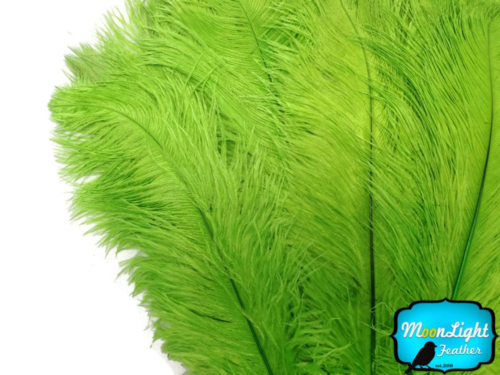 Ostrich feathers pieces quot lime green
