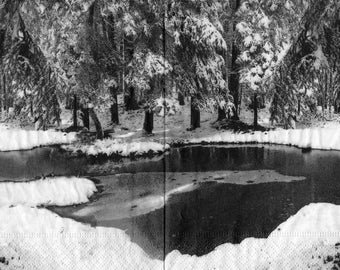 564 winter landscape in black and white 1 lunch size paper towel