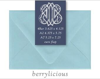 Berrylicious | 10 Blank Euro Envelopes | A7 • A2 • RSVP