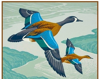 SPRING SALE Digital DOWNLOAD Canadian Teal Ducks Birds by A.J. Casson Counted Cross Stitch Chart / Pattern